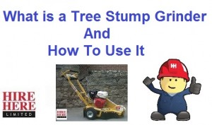 How To Use A Tree Stump Grinder Hire Here Ltd Dublin