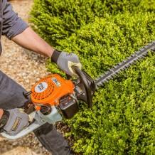 Hedge & Tree Cutting